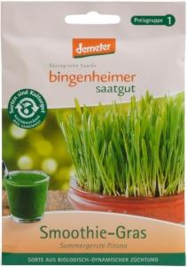Smoothie-Gras / Sommergerste