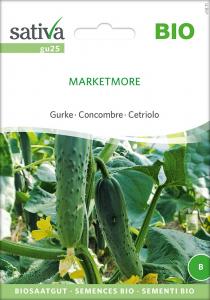 Gurke Marketmore