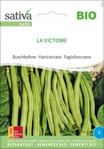 Buschbohne La Victoire