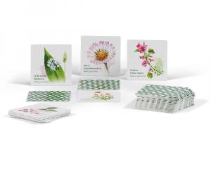 Natur-Memo Essbare Wildpflanzen