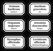 Aufkleber für Apothekergläser / Lateinisch-Deutsch