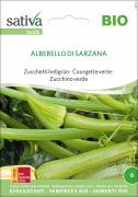 Zucchetti hellgrün Alberello Di Sarzana