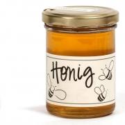 Honig aus Berlin - Frühlingsblüte