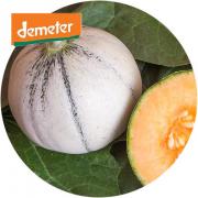Zuckermelone Murrmel
